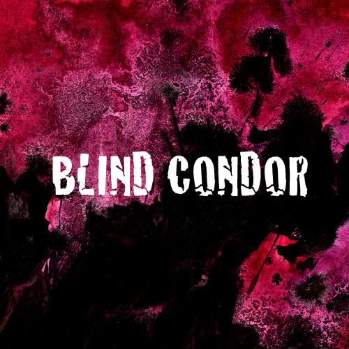 Blind Condor